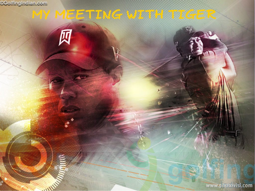 My meeting with Tiger collage